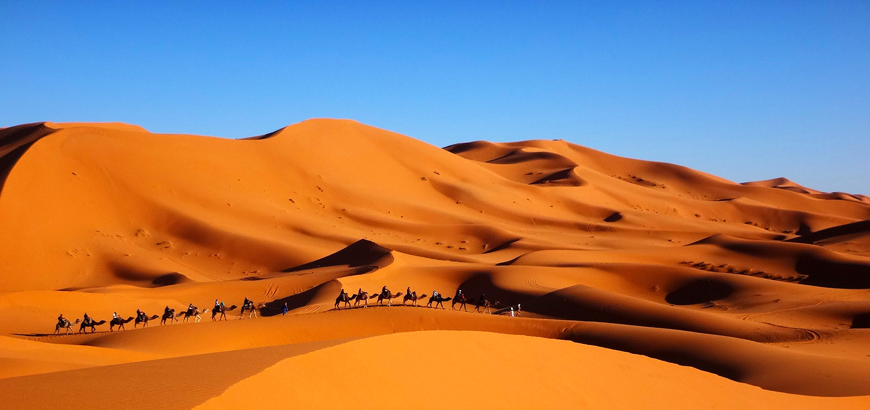 Maroc, randonnée chamelière dans l'Erg Chebbi