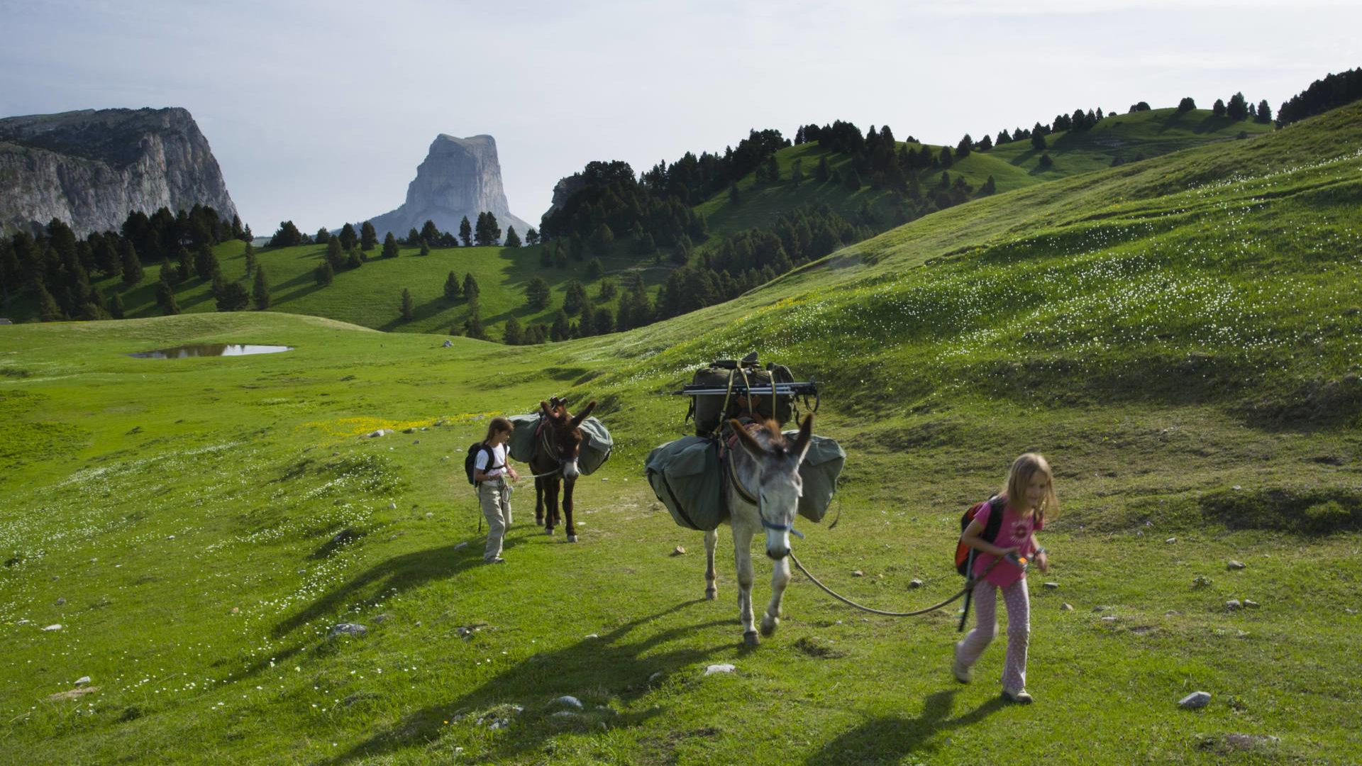 Randonnée dans le Vercors en famille avec des ânes © Sandrine et Matt BOOTH