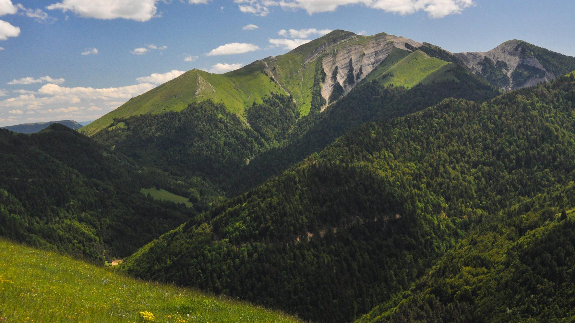 Dans les environs de la montagne du Jocou