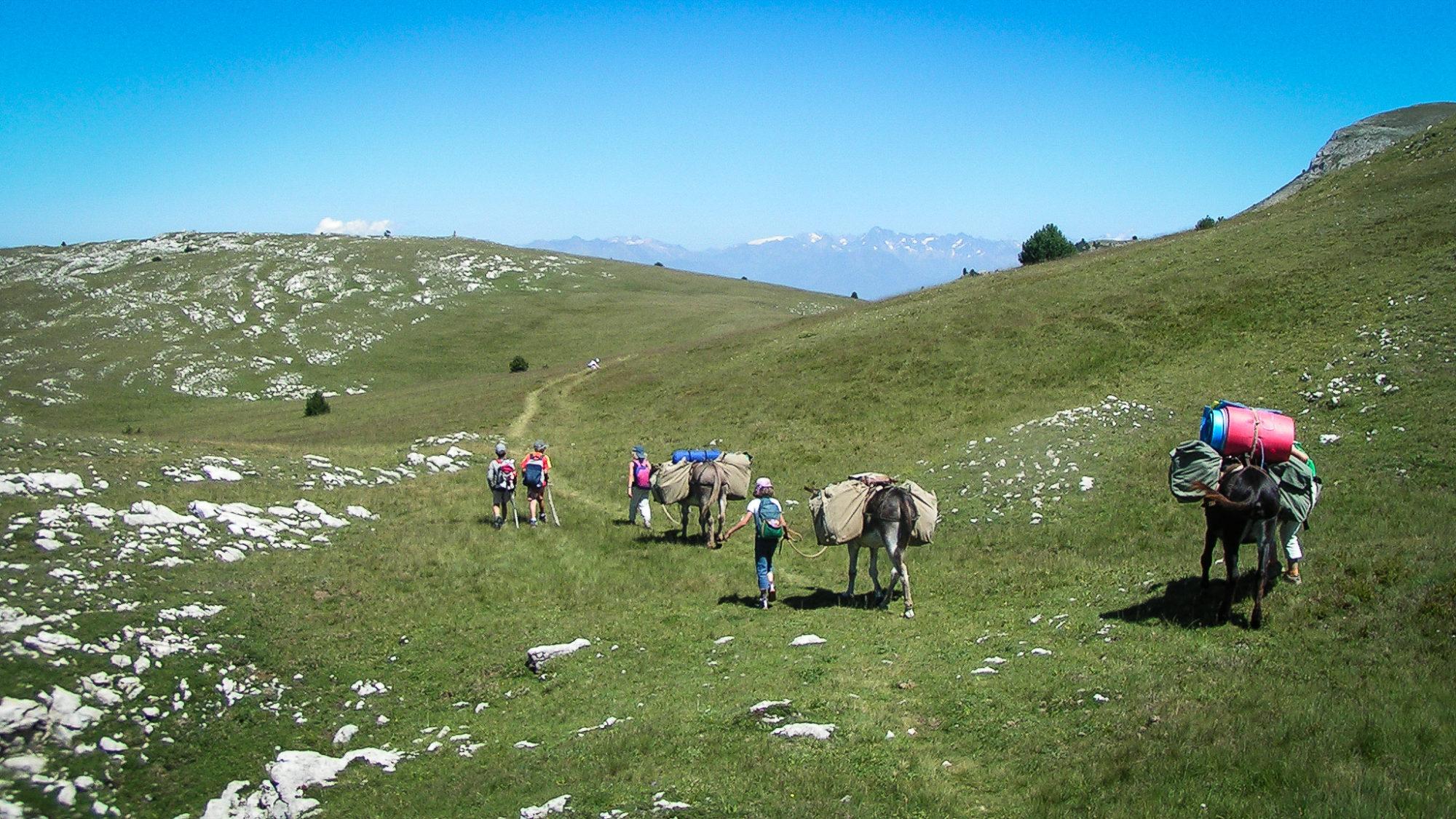 rando en famille, on forme une petite caravane avec les ânes sur les Hauts-Plateaux
