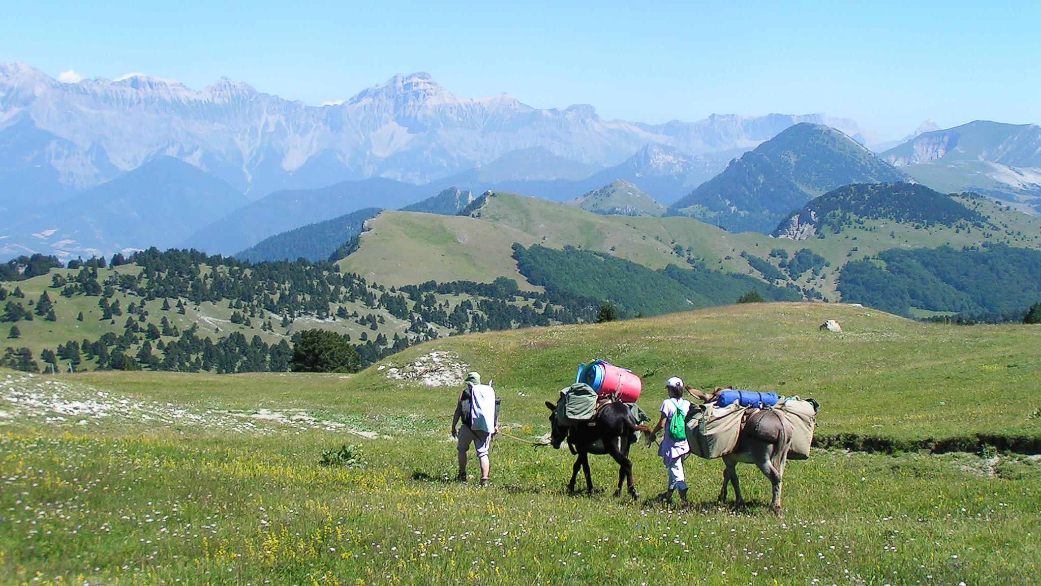Petite caravane transhumante sur les Hauts-Plateaux du Vercors