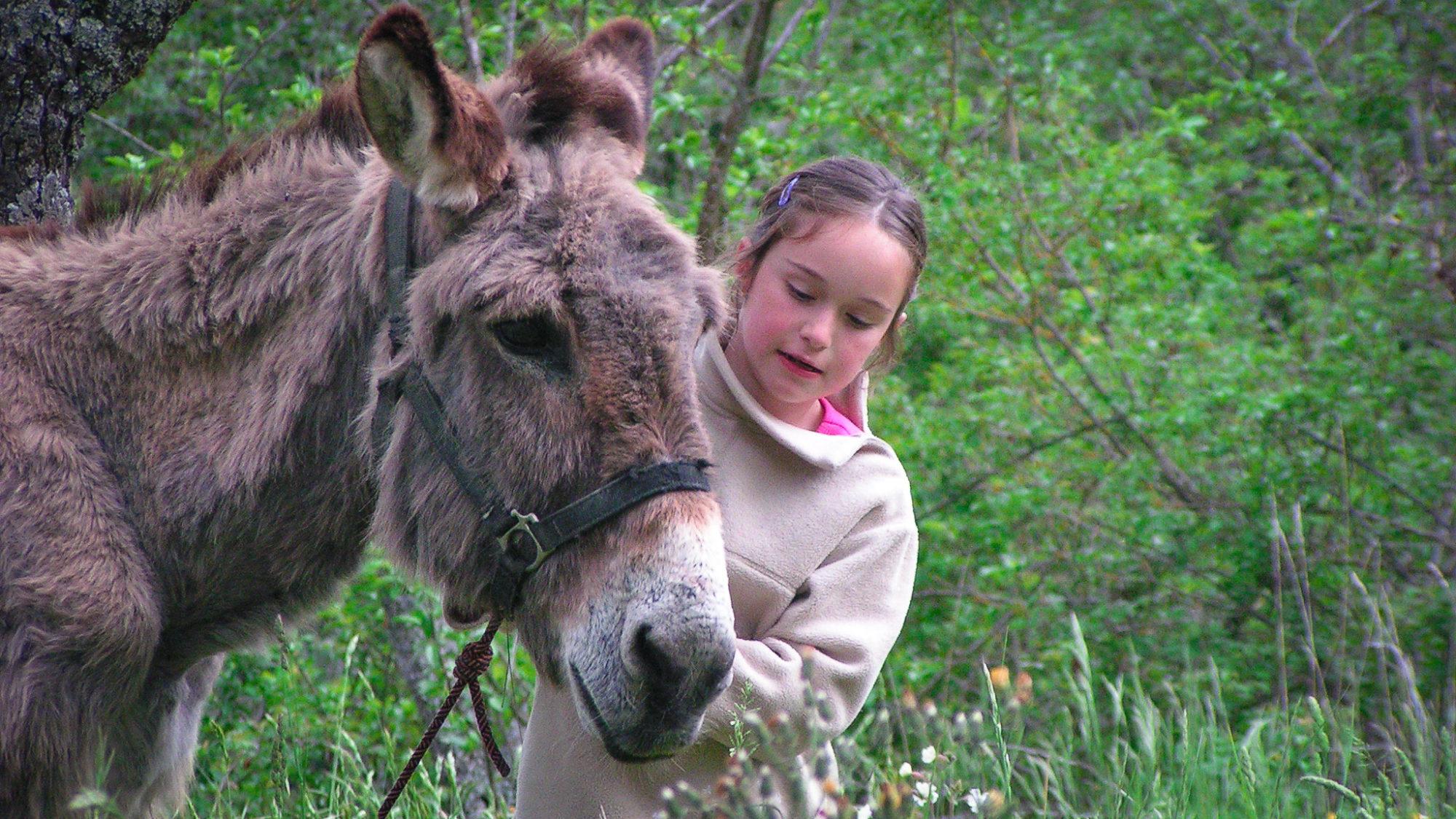 Les ânes sont d'agréables compagnons pour les enfants