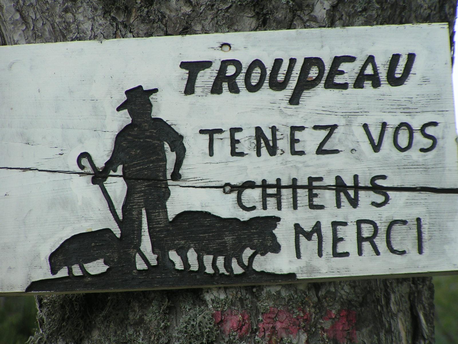 Troupeaux; tenez vos chiens. Merci.