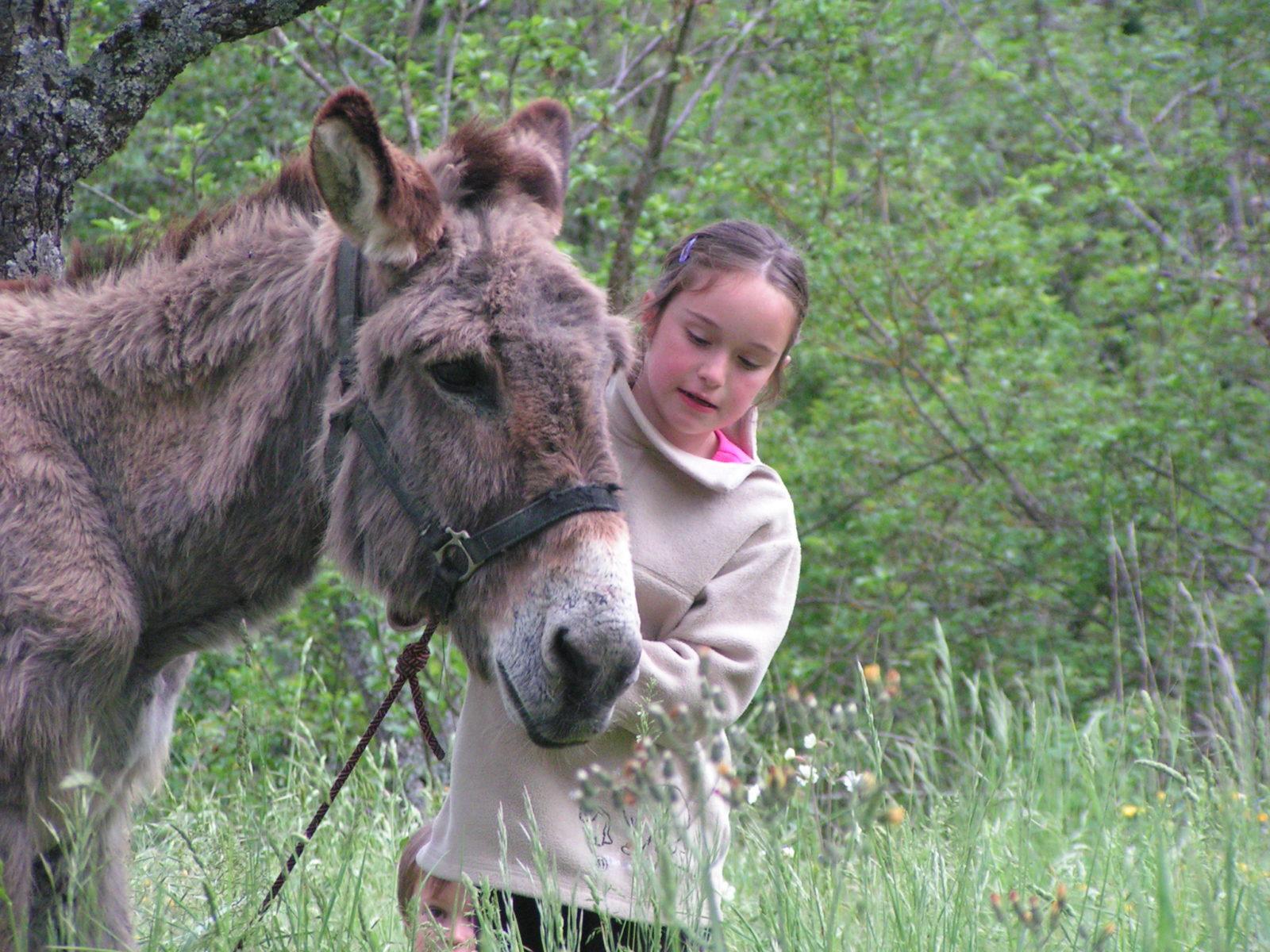Bons moments avec un âne