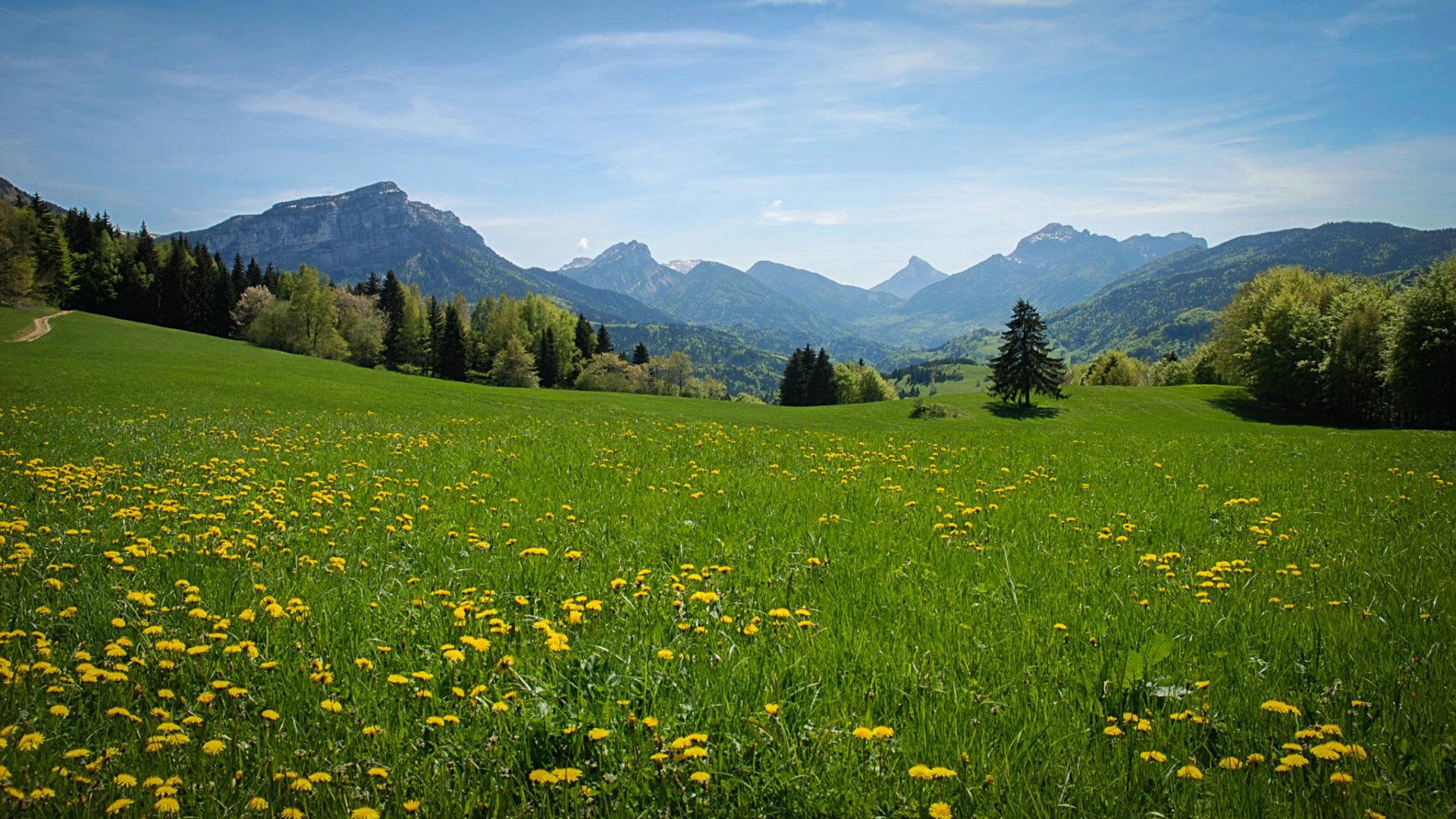 Les paysages de la vallée des Entremonts, ouverts et verdoyants !