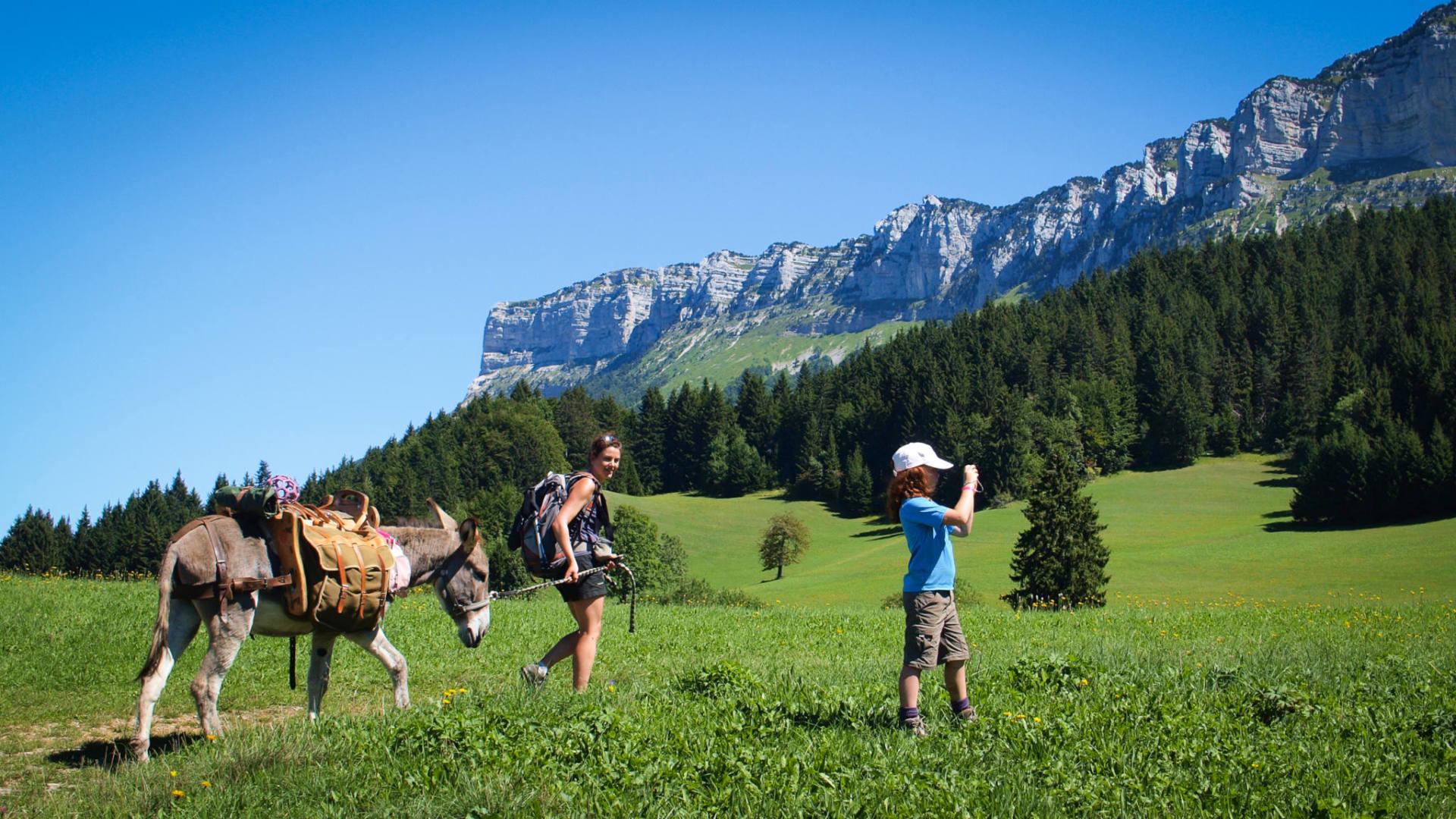 Vacances en famille : rando dans les alpages au pied du Mont Granier