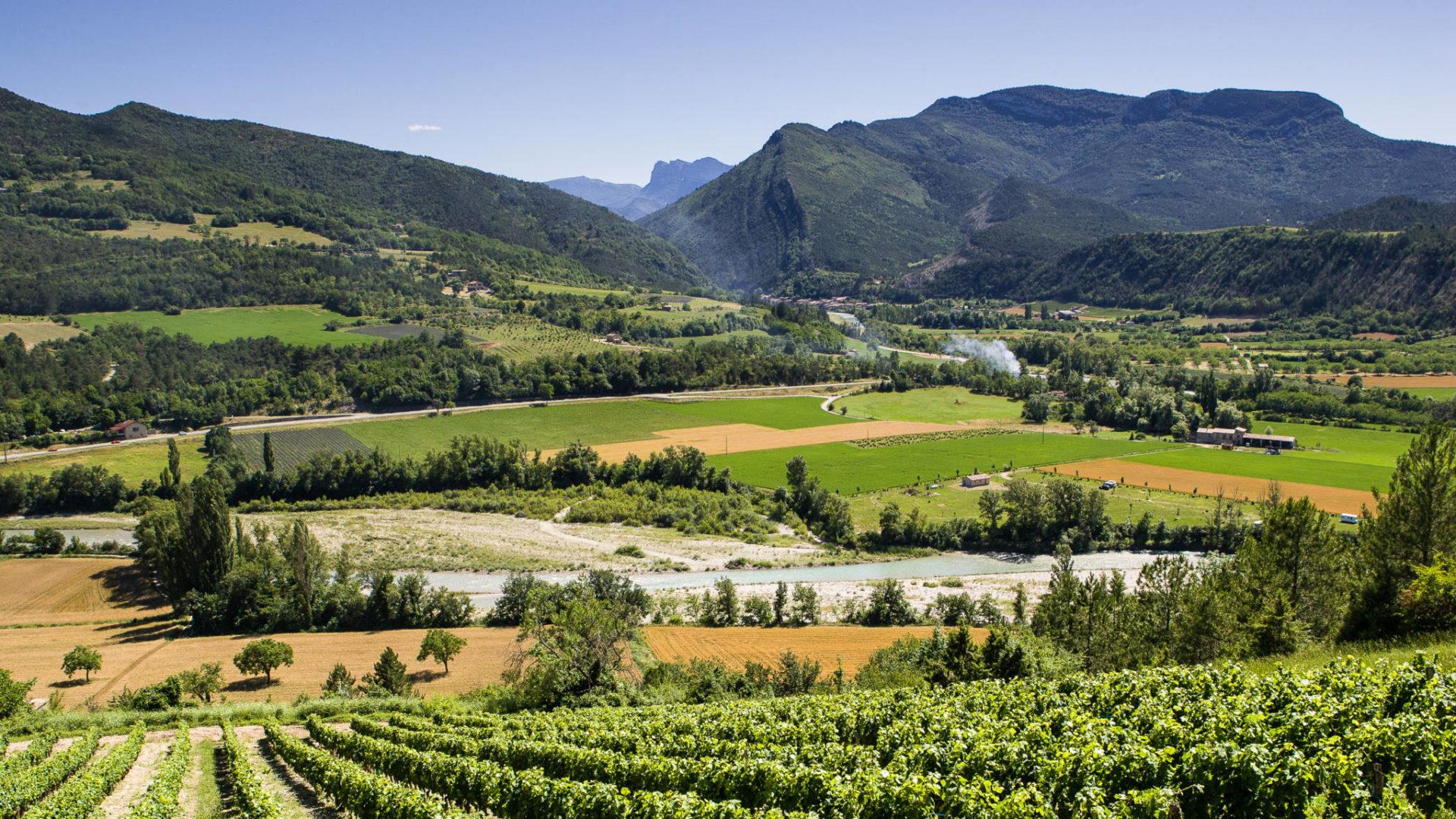 Vignes et paysages des environs de Sainte Croix
