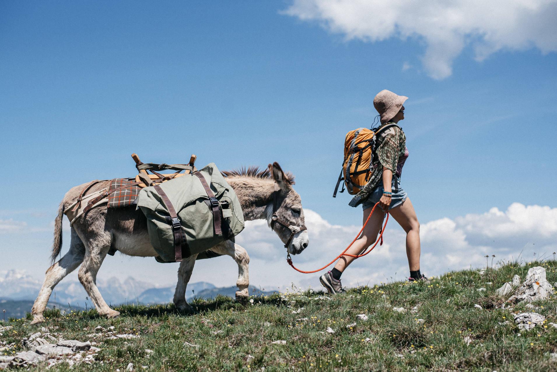 randonnée avec des ânes dans le Haut Diois - photo Maité Baldi