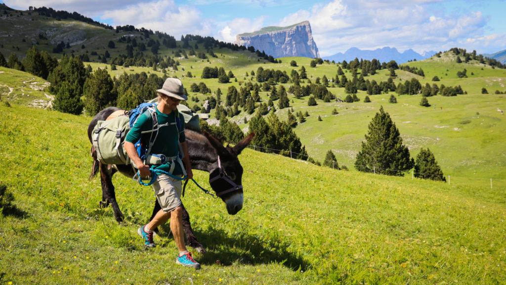 rando avec un âne dans le Vercors